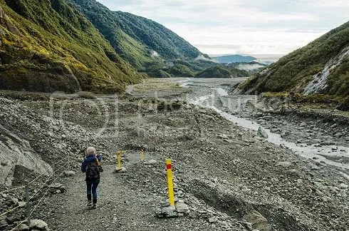 NZ2 photo _DSC0415_zpsc0d1a546.jpg