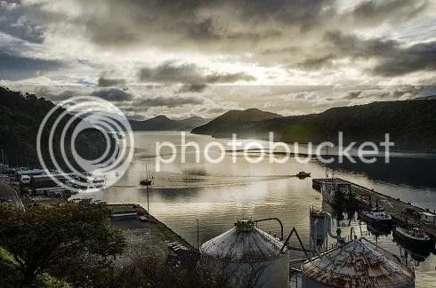 NZ2 photo _DSC0445_zps1a170d44.jpg