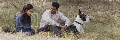 Will Smith Dog and company in Seven Pounds