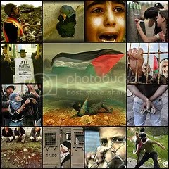 palestina Pictures, Images and Photos