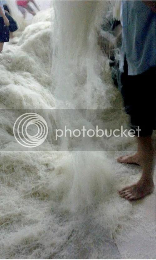 photo pifun05.jpg