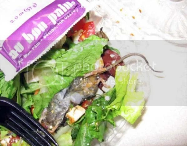 photo gross-food4.jpg
