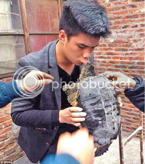 photo kiss-turtle.jpg