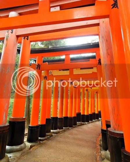 photo japan47.jpg