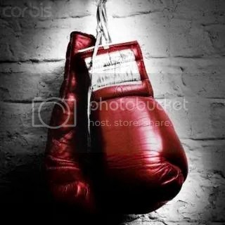 boxing_gloves.jpg boxing gloves image by evaiksno