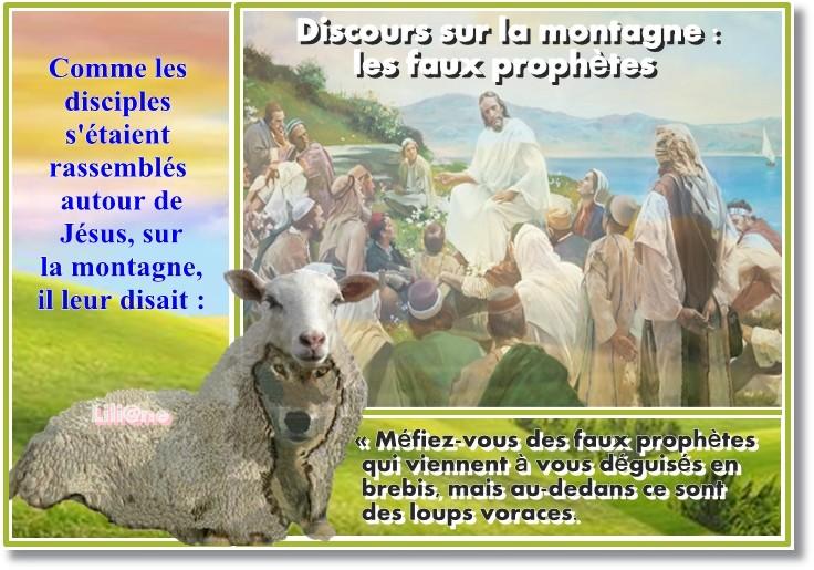 les faux prophètes (Mt 7, 15-20)