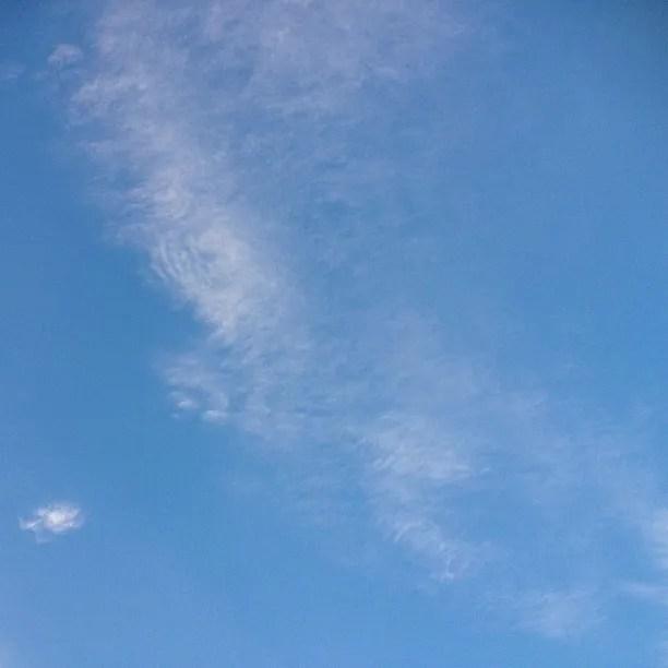 photo a8.jpg