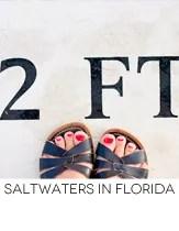 salt waters