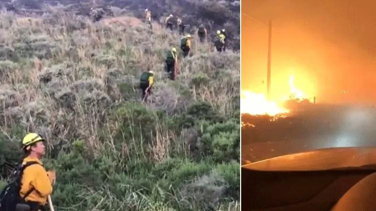ABD'nin Kaliforniya eyaletinde orman yangını 1