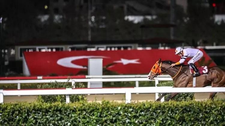 Son Dakika | At yarışları başlıyor! Tarih açıklandı 1