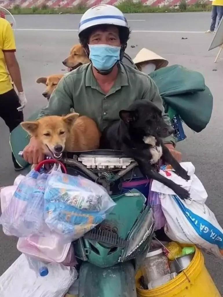 Dünya ayağa kalktı! Sahipleri Kovid-19'a yakalanan köpekleri böyle katlettiler