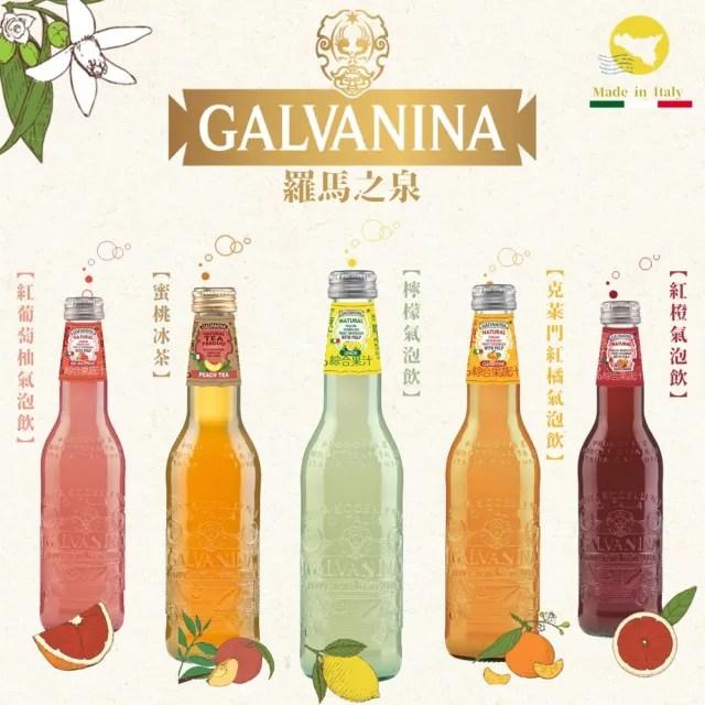 【Galvanina 羅馬之源】天然綜合果汁氣泡飲355MLX12入組(六款口味任選)