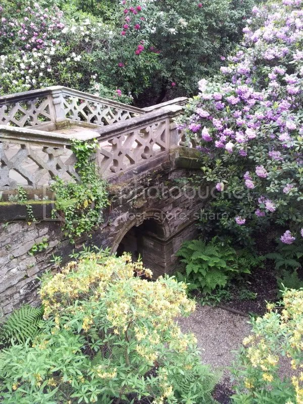 A bridge on the grounds of Hever Castle