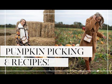 PUMPKIN PICKING & FINDING THE PERFECT WINTER COAT! // Fashion Mumblr Vlogs