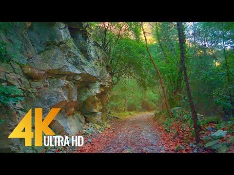 Virtual Hike through Dilek National Park, Turkey (4K Ultra HD) - 10-Bit Color Nature Walk