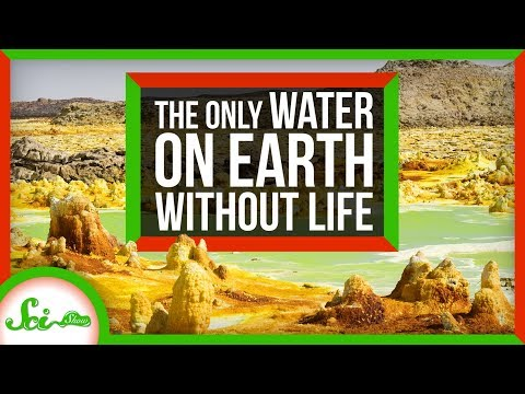 The Only Water on Earth Without Life