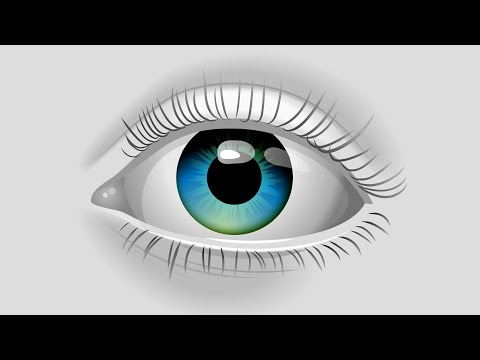 How Openmindedness Works - Exercises To Open Your Mind