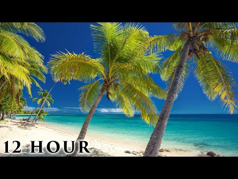 """""""Hidden Tropical Paradise"""" 12 HOUR Ambient Nature Film (No Loops) Outer Fiji Islands Pure Relaxation"""