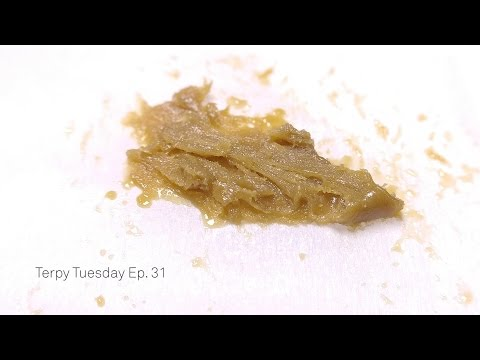 Terpy Tuesday Ep. 31: Cream of the Crop Blueberry Scone & Blue River Terps