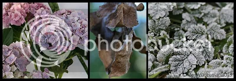 photo za-blog.jpg