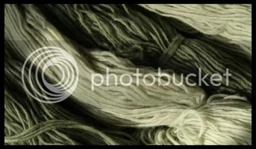 vunica alempijevic 3