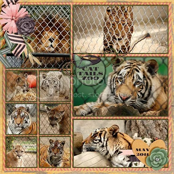 photo E-_My-Layouts_Our-Family_wt_CatTailsZoo_BCMD_BeWild_PinG_LITmpt4_3.jpg