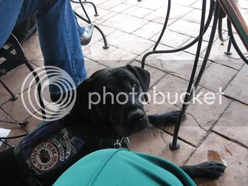 Behaving at Restaurant