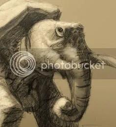 A Tortoise Elephant Concept