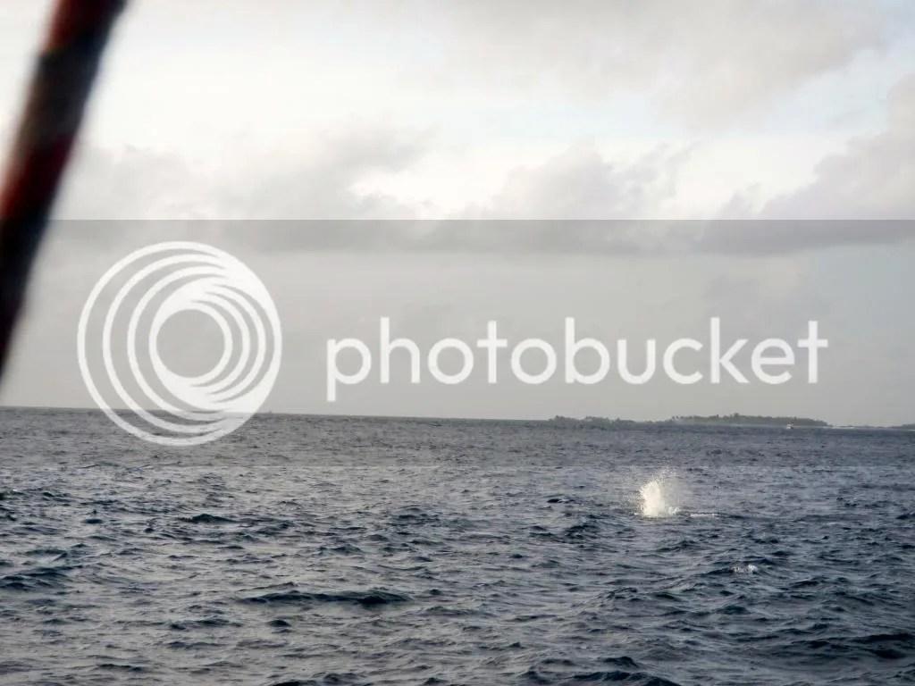 photo DSCN1542.jpg