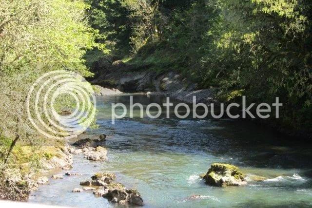 Dorina Bridge Oregan photo DorenaBridge9.jpg