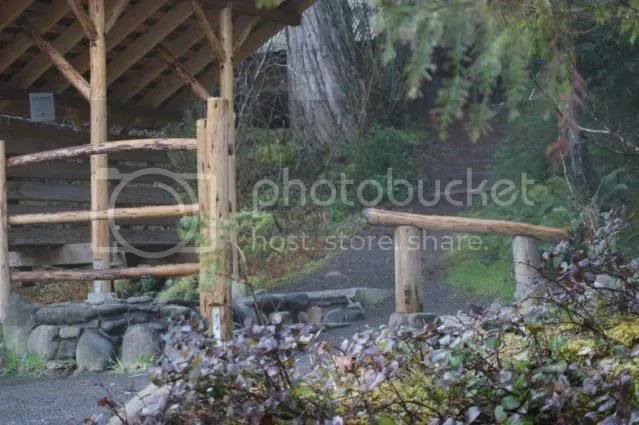 BreitenbushFeb2008022.jpg picture by irelandsking