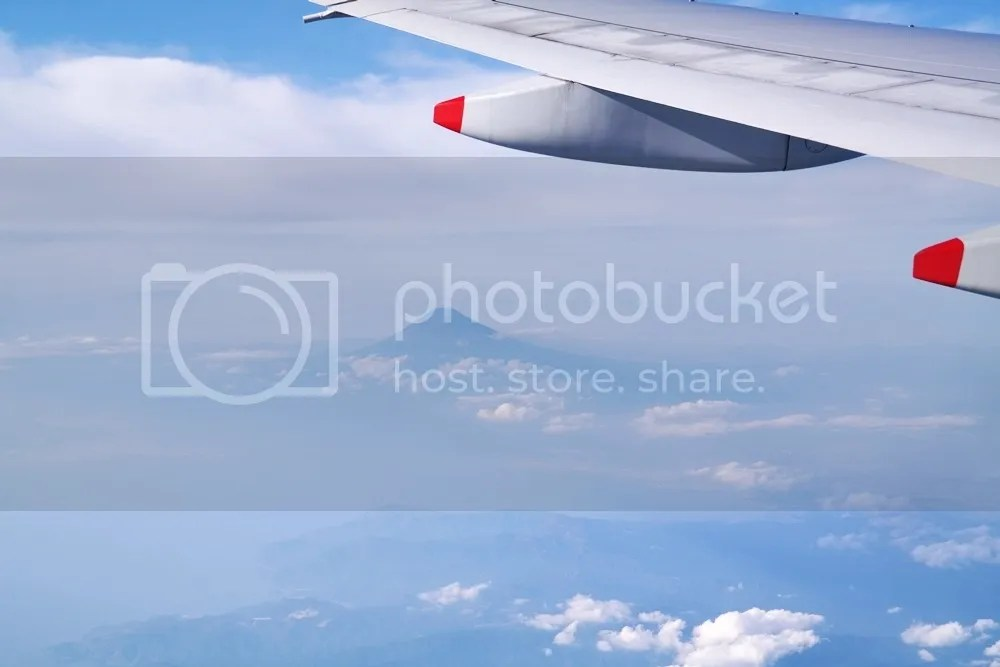photo 14 1.jpg