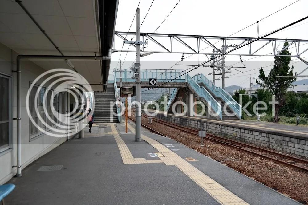 photo 07 8.jpg