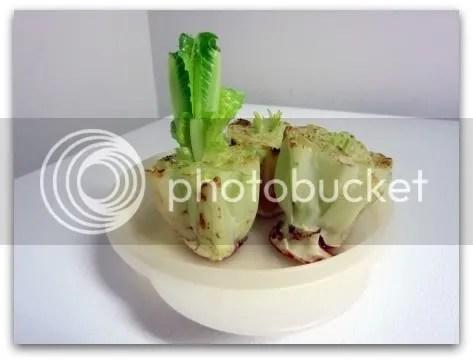 Re-grow lettuce!