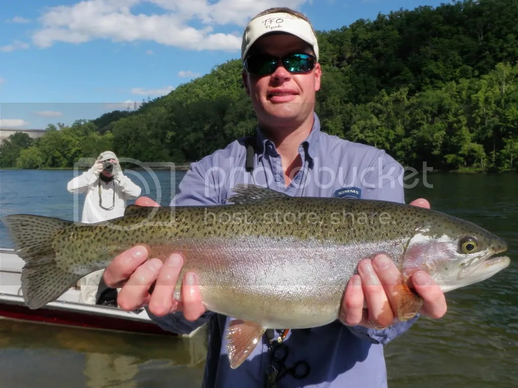 Phenomenal fishing at bull shoals the ozark fly fisher for Bull shoals lake fishing report