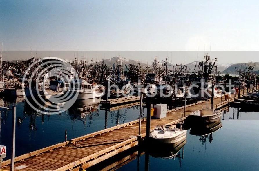 Kodiak Harbor at peace