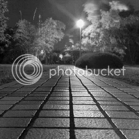 Night sidewalk