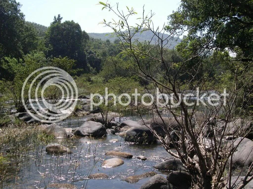 Aniyur stream