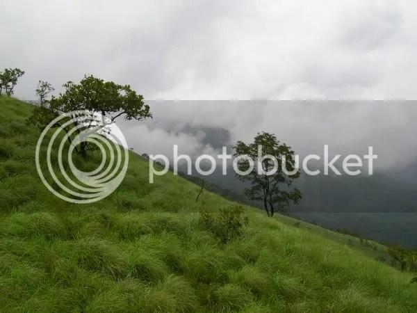 Venkatagiri range