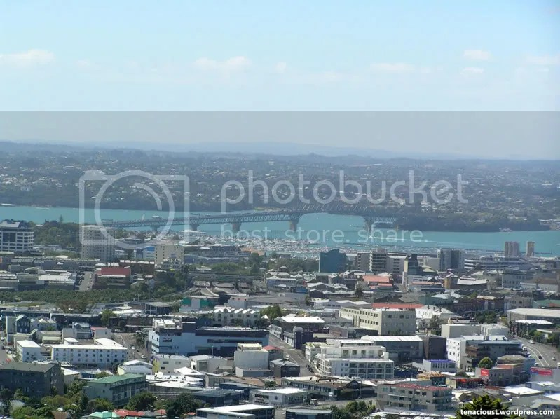 Harbour Bridge from Mount Eden