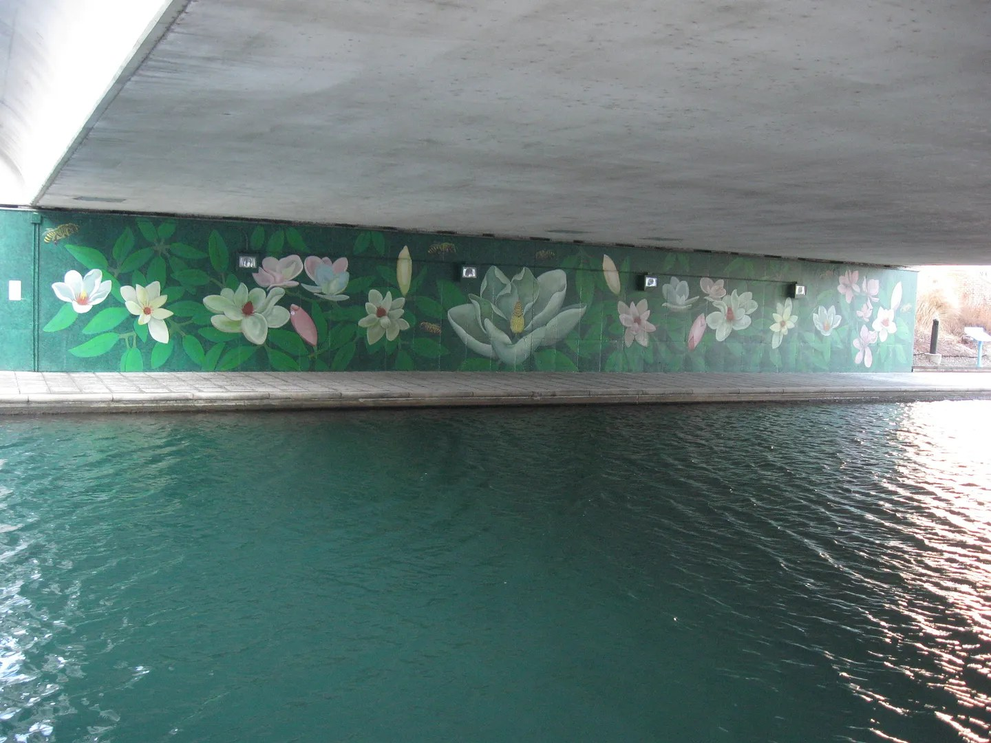 46 for XLVI, Green Mural, White River Canal