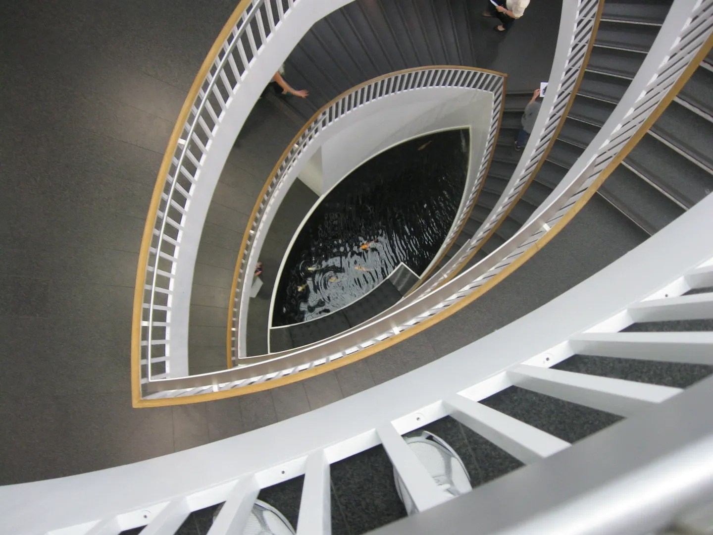 staircase koi pond, Contemporary Museum of Art, Chicago