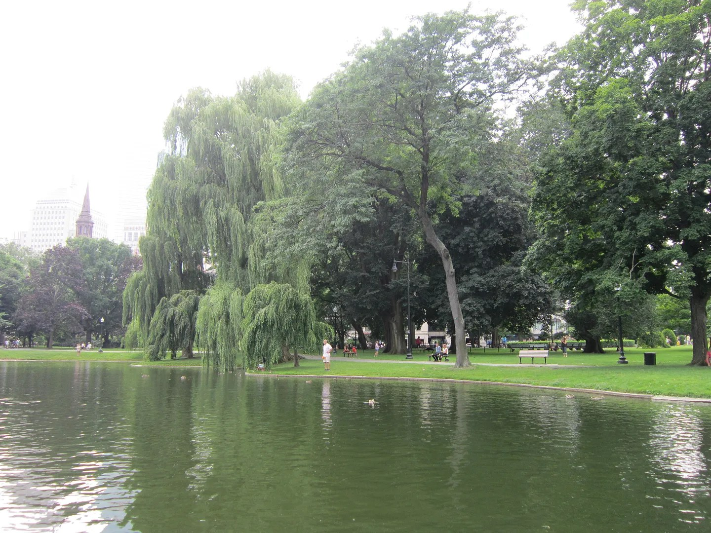lagoon, Boston Public Garden
