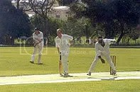 Maltese people playing cricket