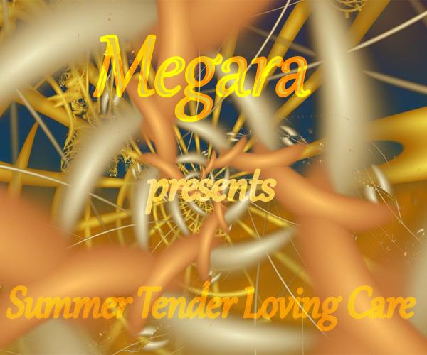 cover summer tender loving care