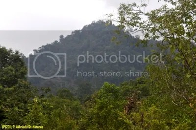 HPPB of Andalas Botanic Garden