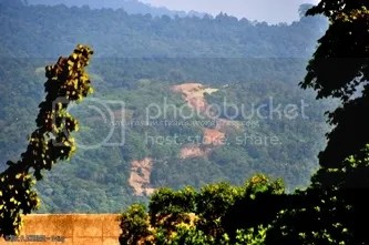 Pembukaan Jalan Yang Menembus Kawasan Hutan dari Lubuk Kilangan ke Bungus Yang Dapat Berdampak Kepada Meluapnya Batang Timbulun