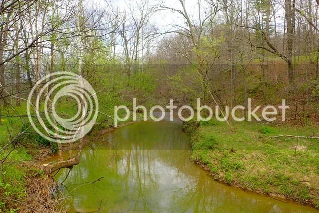 photo Creek 2_zps7055csaw.jpg