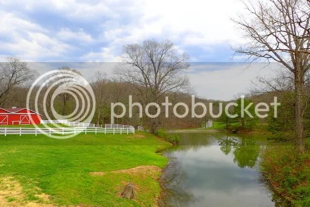 photo Creek 3_zpsmoa6xkmg.jpg