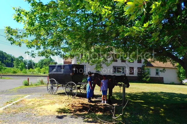 photo CG market Amish_zpsthzhpgno.jpg